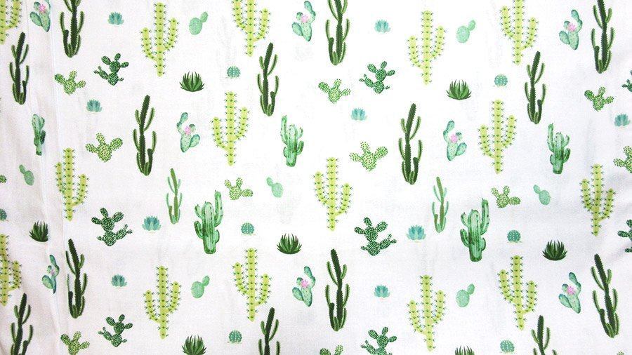 Summer Time - Small Cactus - Green
