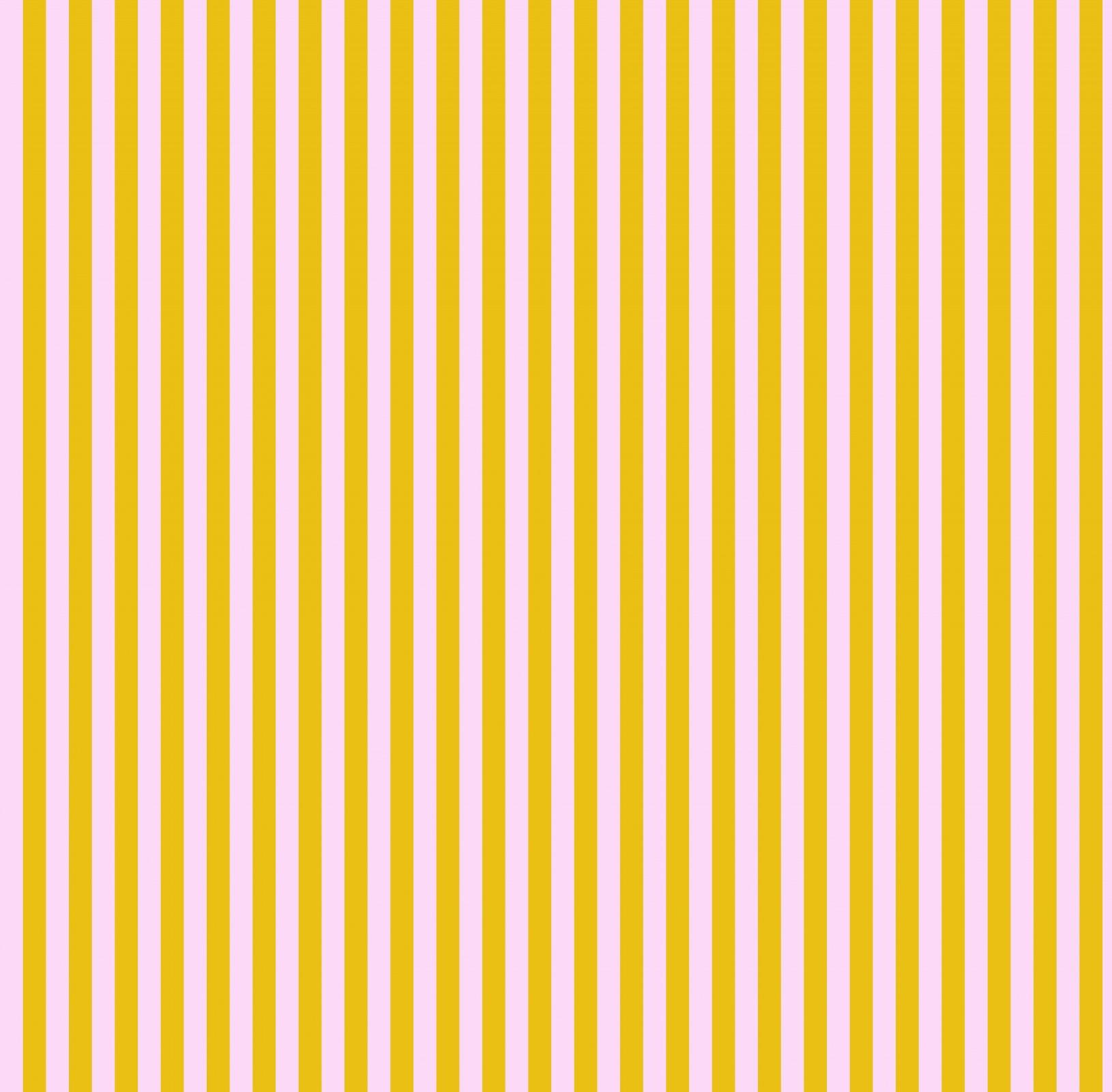 Free Spirit - Tula Pink - True Colours - Tent Stripes - Marigold