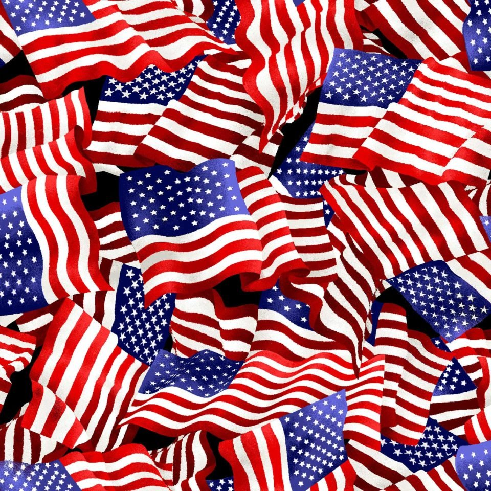 American Flags 4292