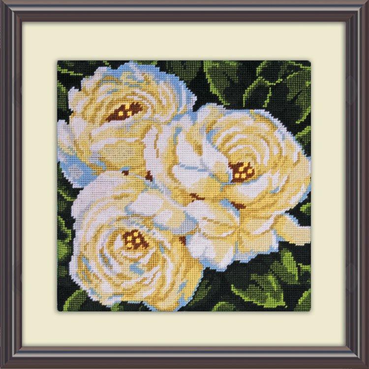 # 2515 White Roses