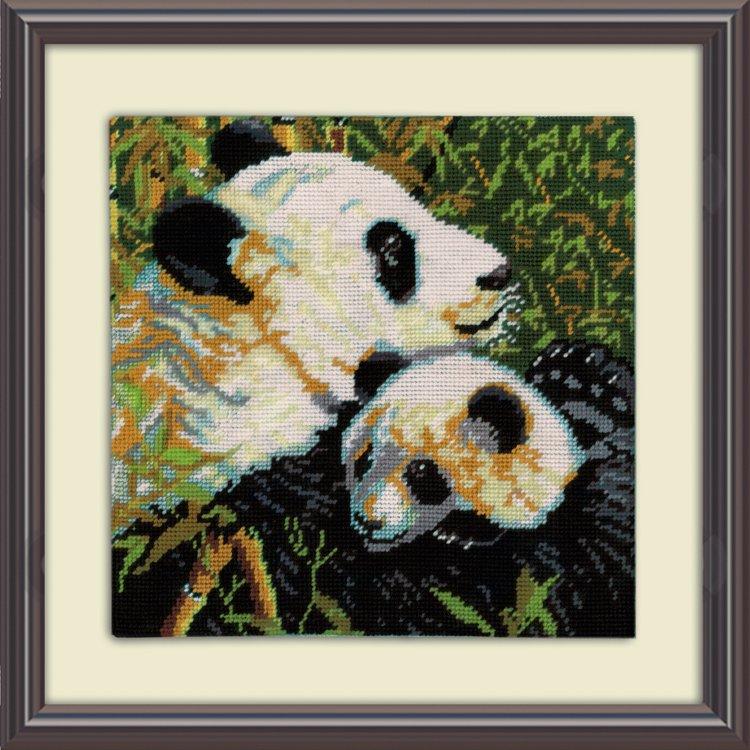 # 2522 Pandas