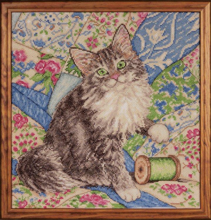 # 2843 Cat on Quilt