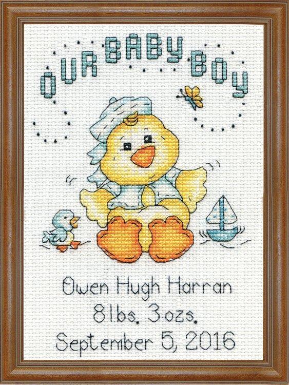 # 2897 - Boy Chick