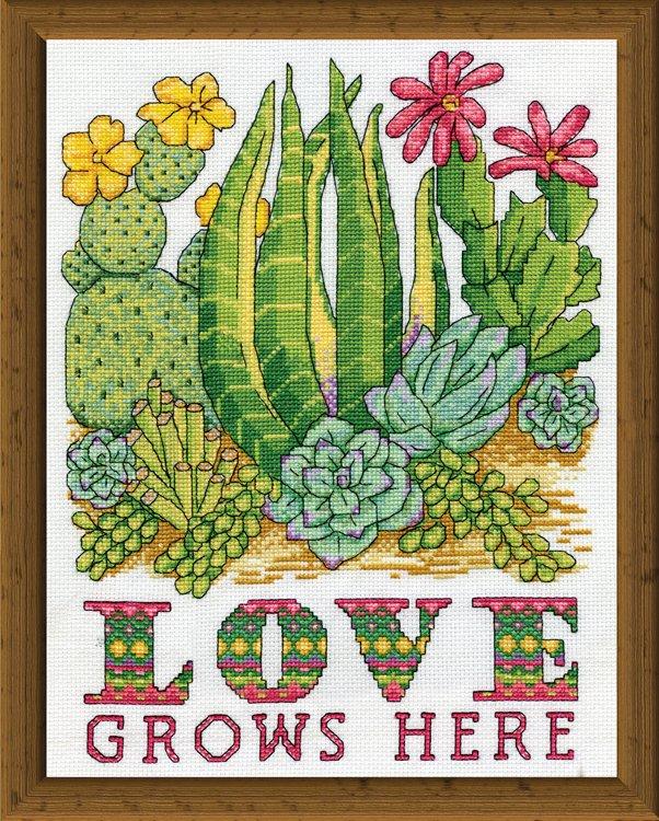 # 3245 Cactus Love