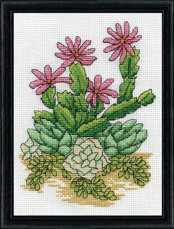 # 3292 Cactus