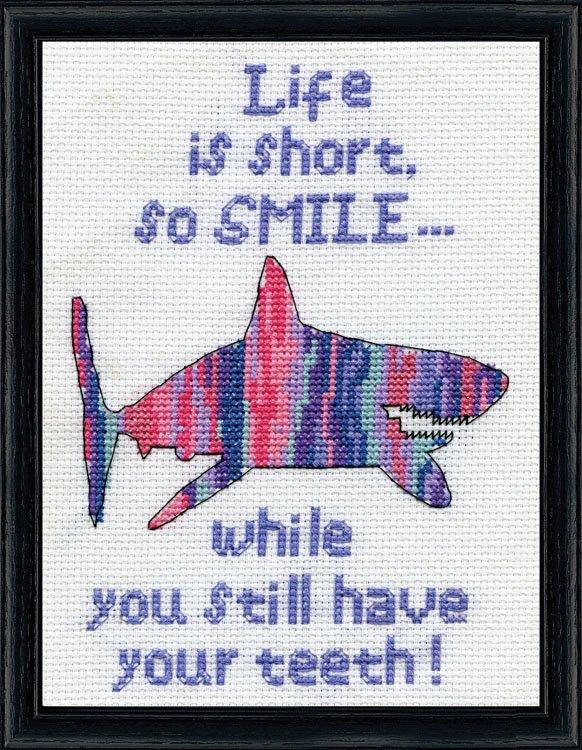 # 3301 Smile Shark