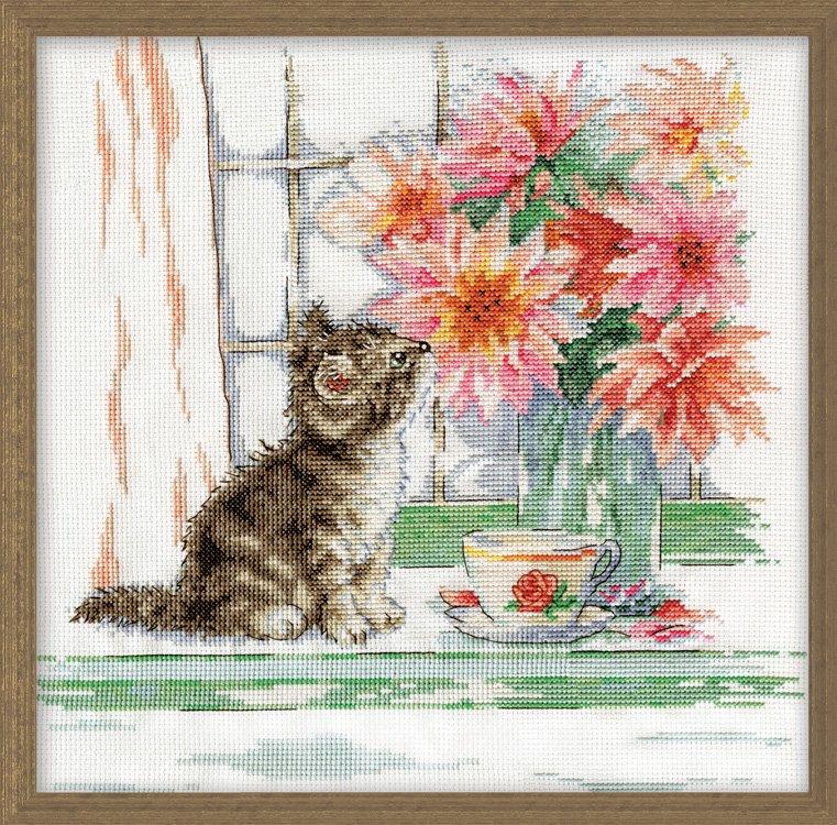 # 3395 Curious Kitty