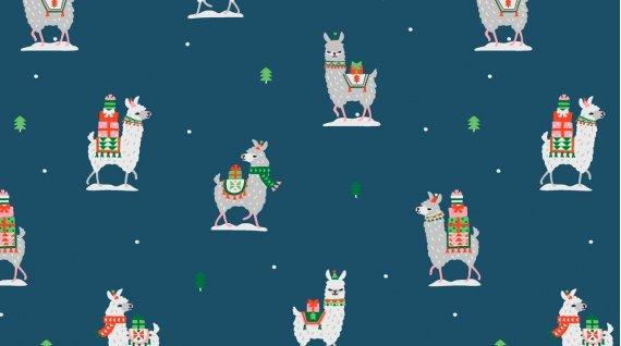 Stella-1228 Llama Gifts
