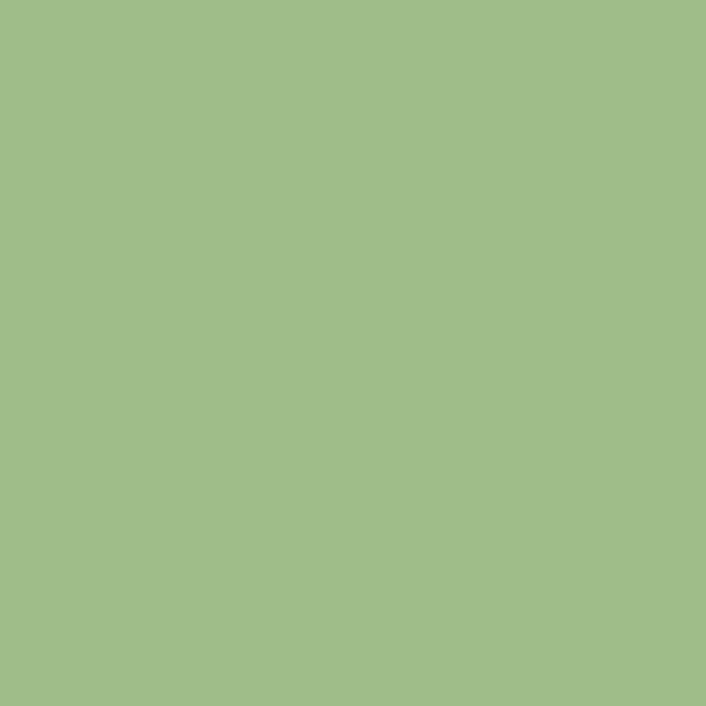 Tilda Solids in Fern Green