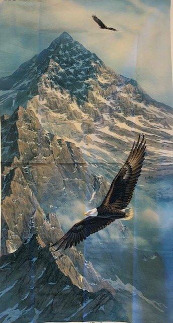 Eagle Soaring High
