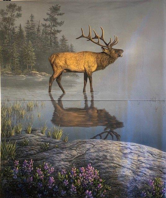 Elk In the Water