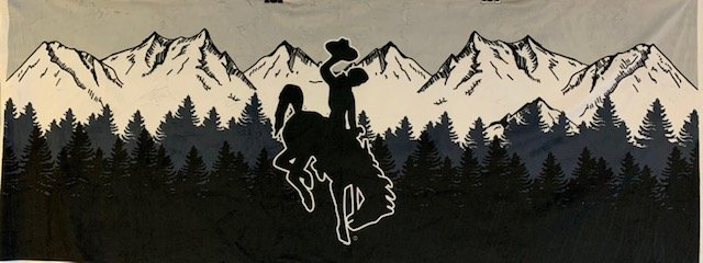 Wyoming Cowboy Panel- Minkee Black
