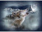 Wolf Moonstruck Digital Panel
