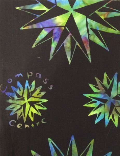 Compass LOGO Fabric in Hummingbird