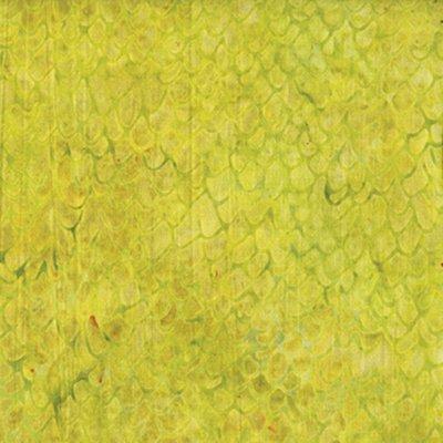 Acorn Caps Shades of Lime Green Batik 711606003