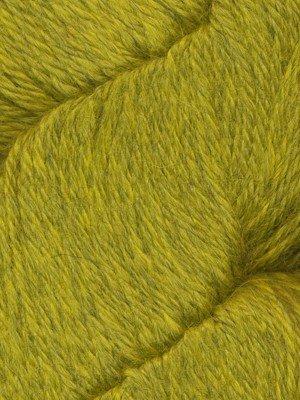 Herriot Golden Llama