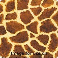 Wild giraffe Picture This digital prints AYK-17266-286