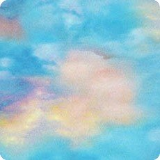 Sky Picture This digital prints AYK-17277-63