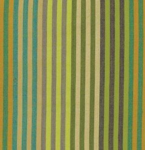 Sprout Caterpillar Stripe WCATERX.SPROU Kaffe Fassett