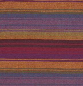 Exotic Stripe Purple