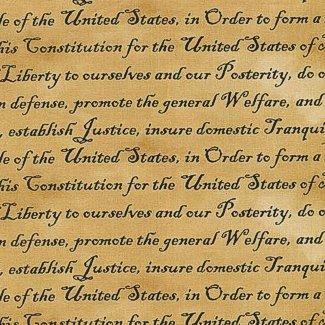 Defenders of Freedom 112-10922 Preamble Tan