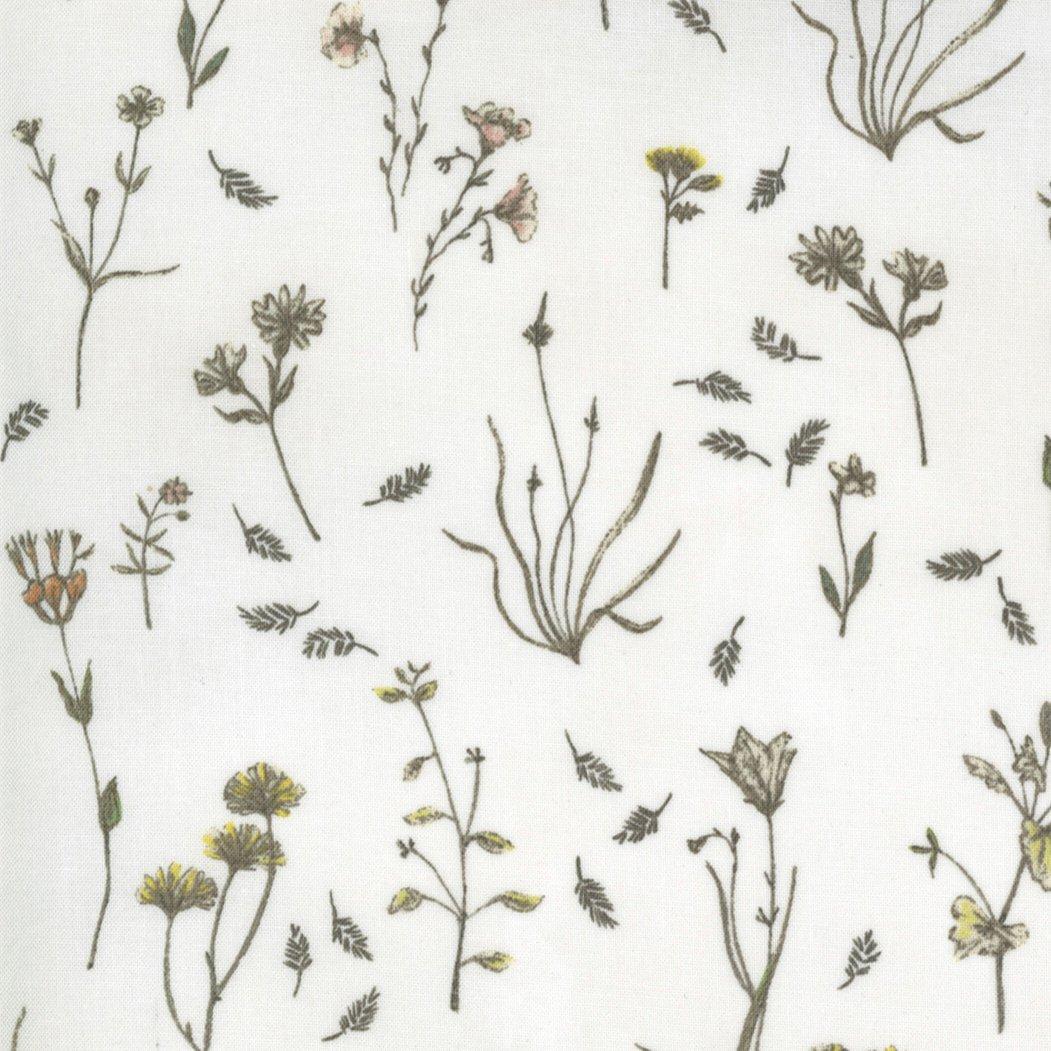 Botanicals 16911-11 Parchment