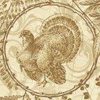 Turkey Run 2397-70
