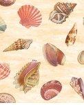 Seaside Wonders 28105-135