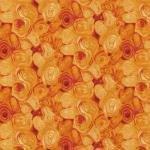 Sea Turtles 112-29651Shall Tex Orange