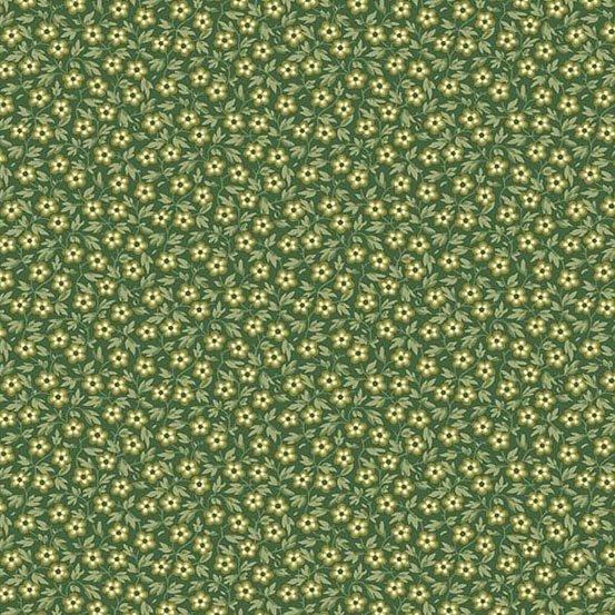Evergreen 9178-G