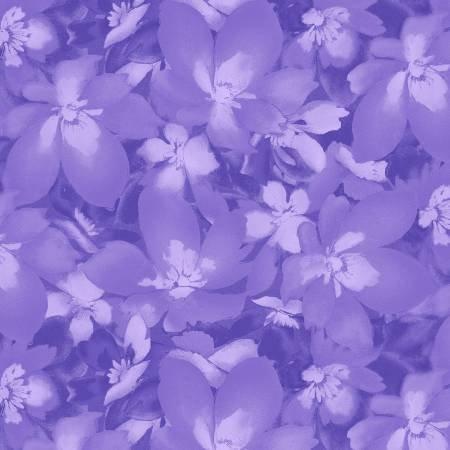 Catalina Ultra Violet 8406-V