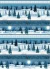 Winter Frost 9693-11