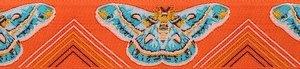 AM-015-1 Moths Orange & Aqua