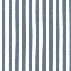 Winter Tails CX3584 Clown Stripe Gray