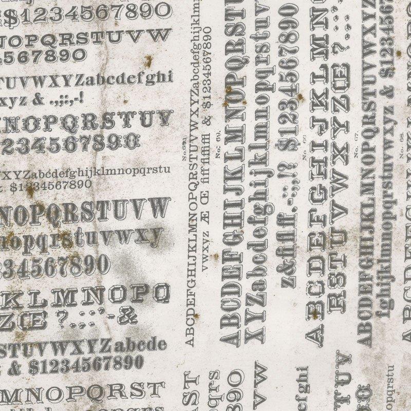 Dapper PWTH057 Typography Neutral