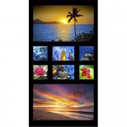Salute to America Paradise 1DPAR1 Digital Panel