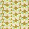 Clementine PWHB055.GINGE Flutterby Ginger