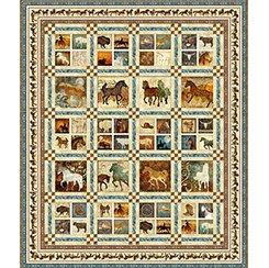 Unbridled Quilt Pattern