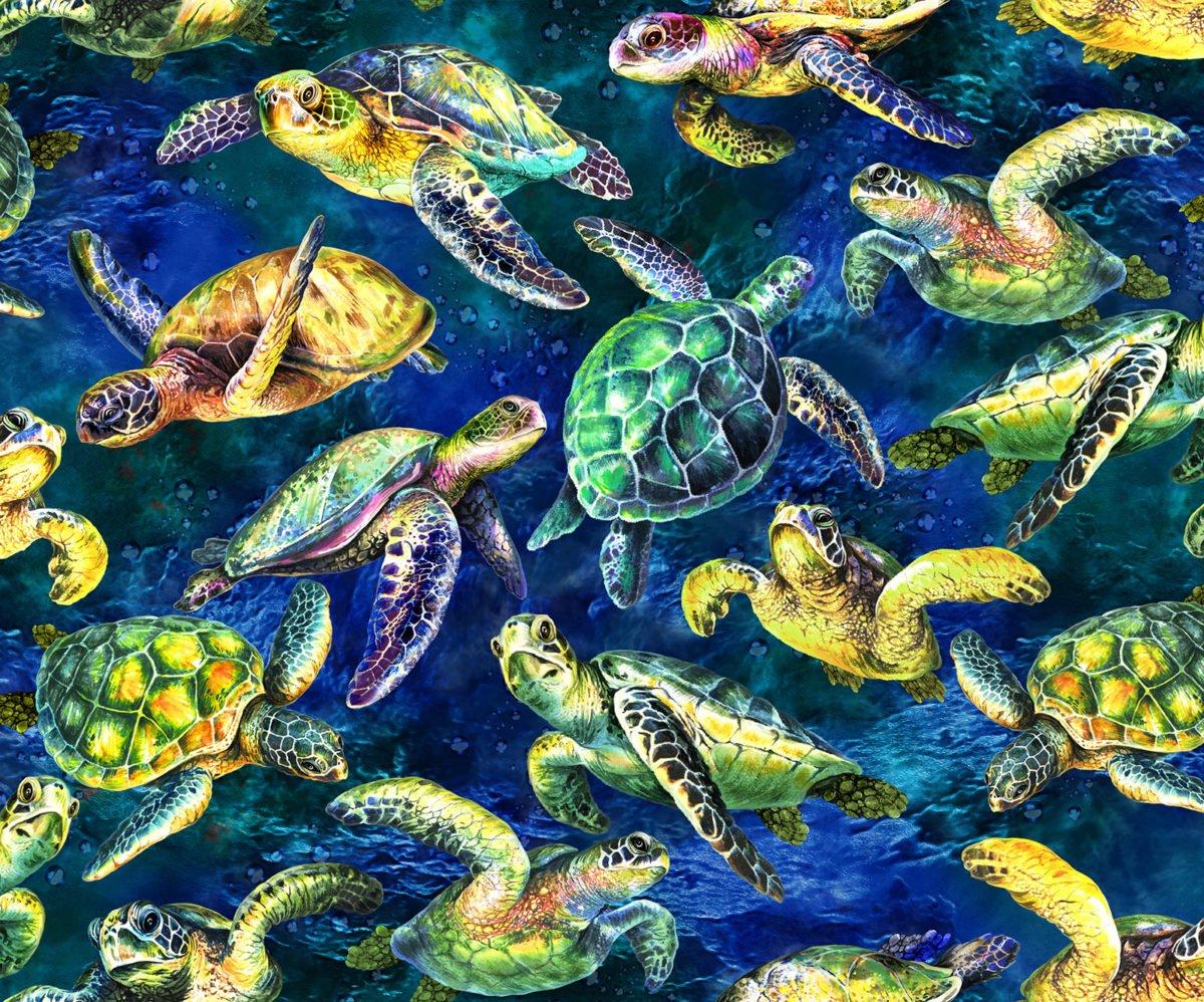 The Reef OA593851 Turtles Dark Blue