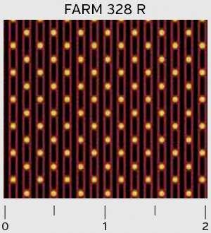 Farmhouse Stripes and Dots 328R