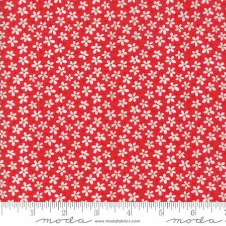 22344 11 Badda Bing Red