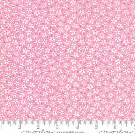22344 12 Badda Bing Pink
