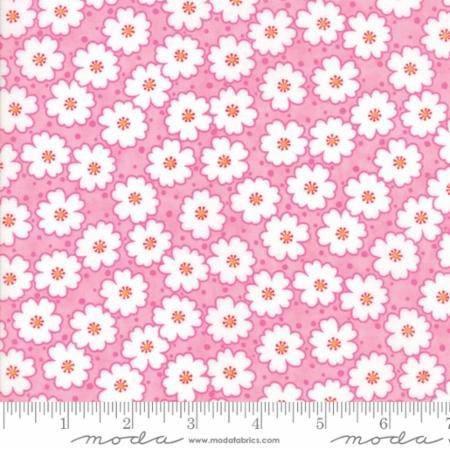 22346 12 Badda Bing Pink