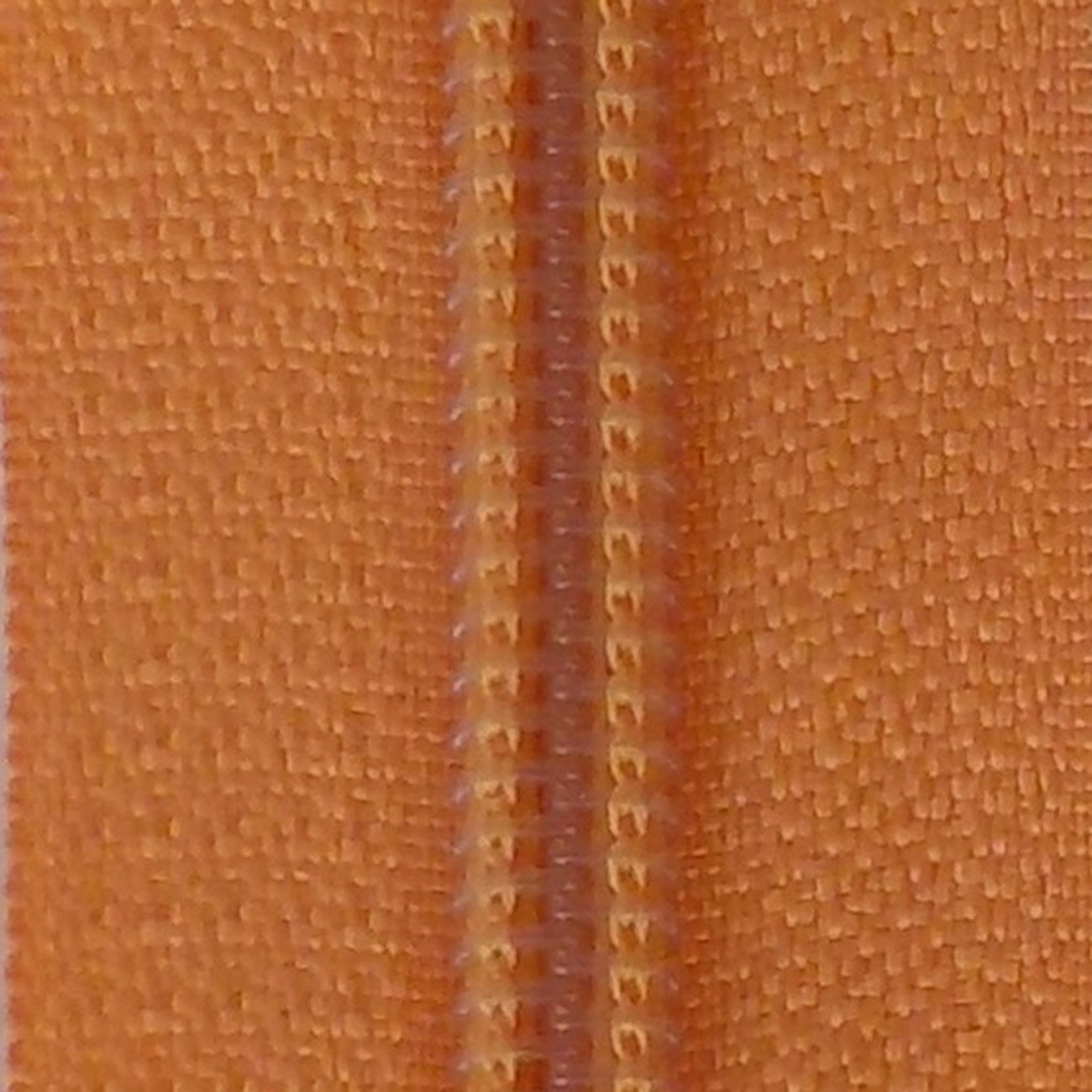 14 Nylon Coil Zipper Pumpkin