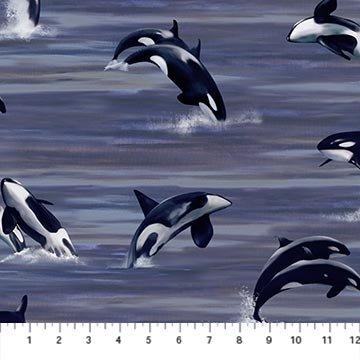 Migratory Pursuit Whales