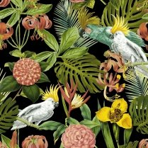 Paradise Birds & Flowers