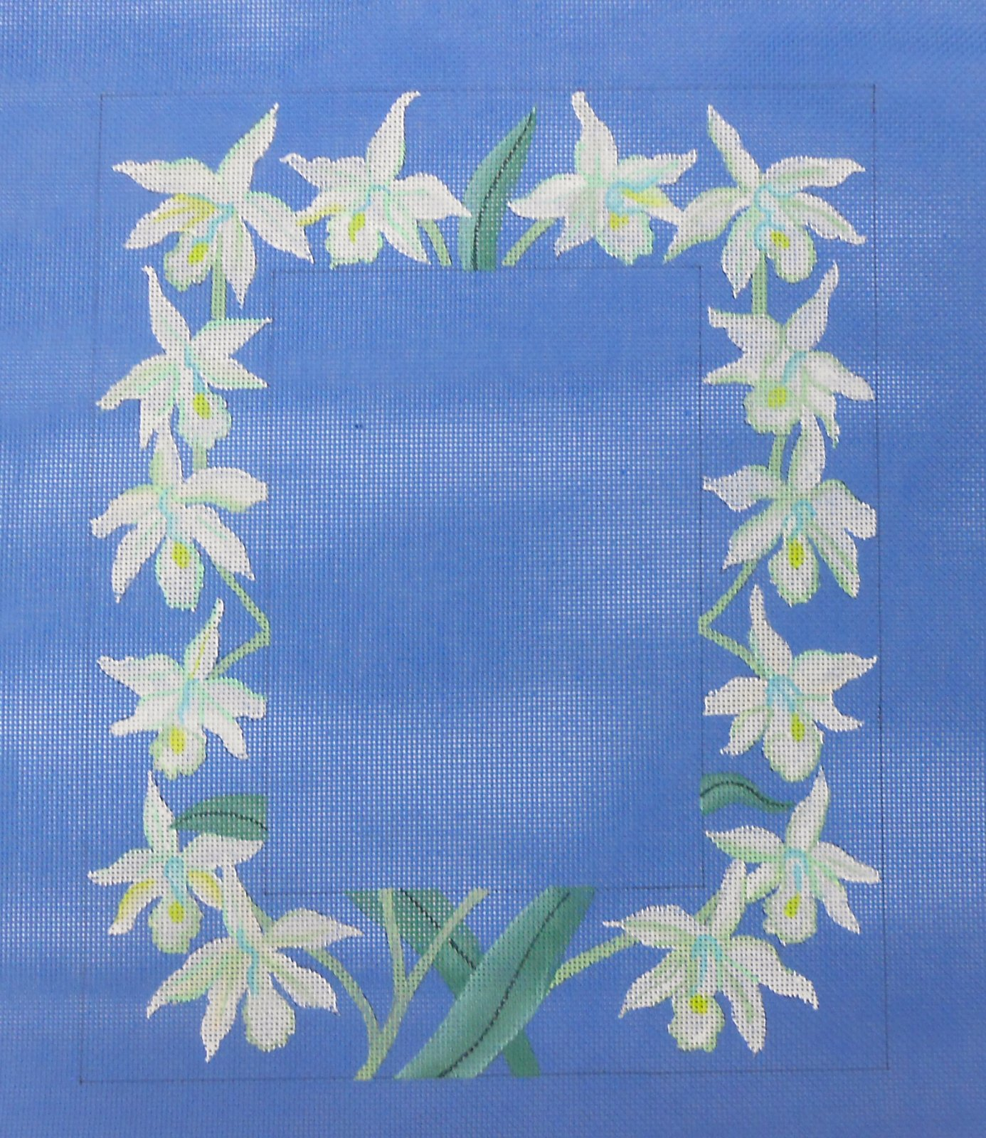 Orchid Frame on China Blue