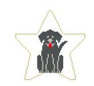 Black Labrador Star