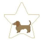 Dachsund Star