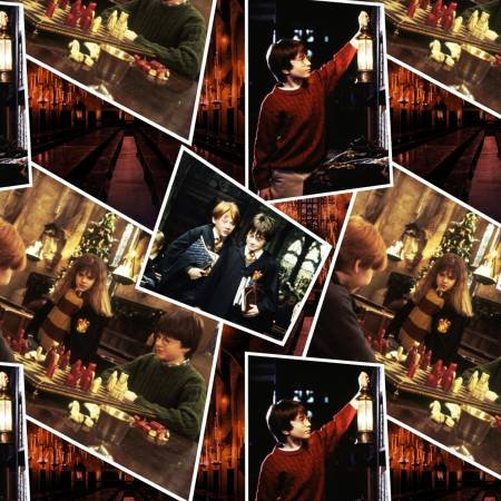 Camelot Fabrics - Harry Potter - Scenes
